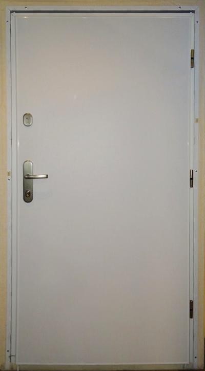 Дверь входная WX10